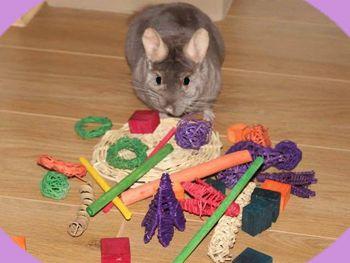 loose floor toys